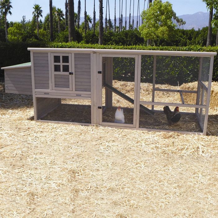 (3)  Extreme Hen House Chicken Coop with Nesting Box, Ramp and Roosting Bar Pets | Wayfair