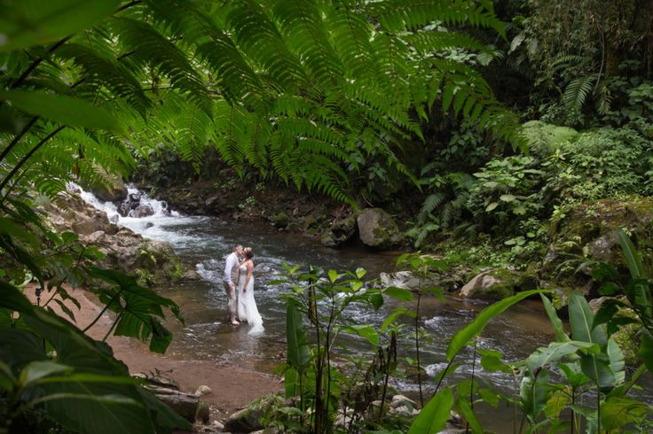 36 Best Images About Rainforest Weddings In Costa Rica On Pinterest