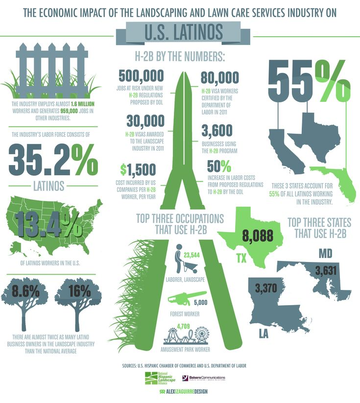 Sj Landscapes And Gardening Services: 77 Best Images About Garden Infographics On Pinterest
