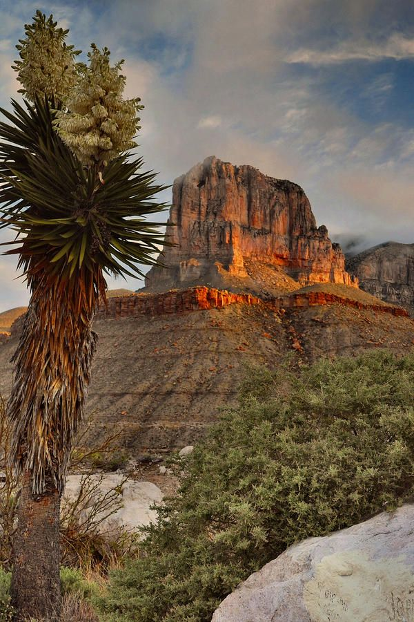 ✮ Light at sunrise on El Capitan - Guadalupe Mountains National Park, West Texas