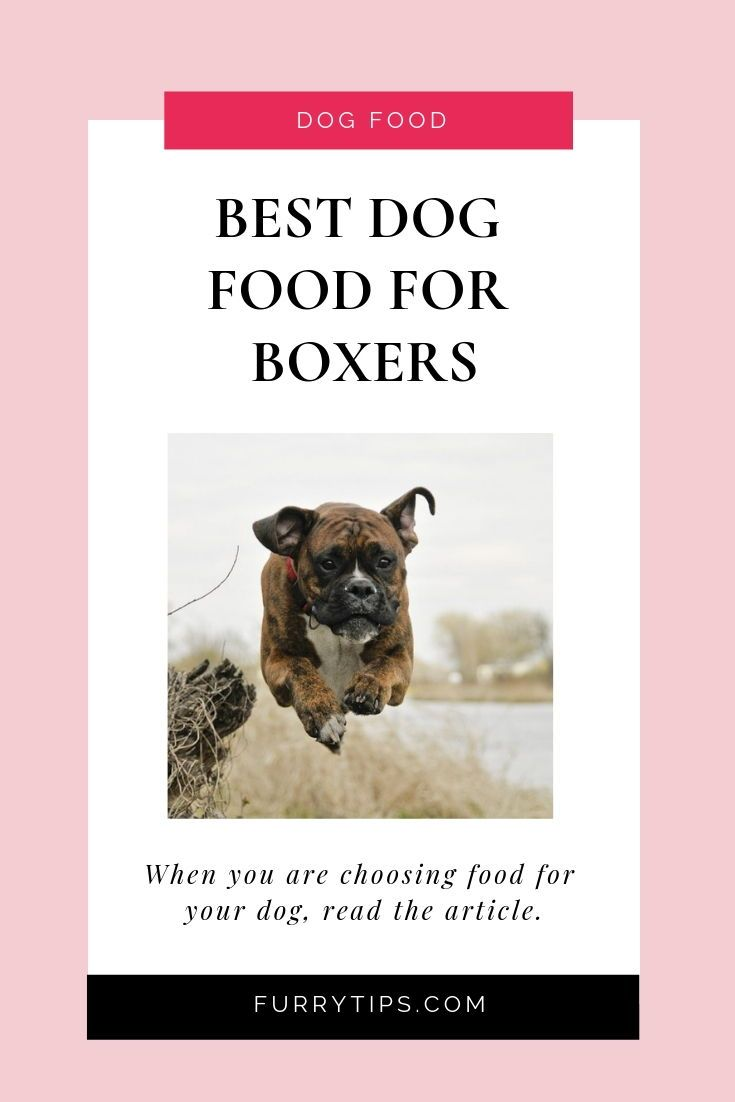 The Best Dog Food For Boxers In September 2020 With Buyer Guides Best Dog Food Boxer Dogs Funny Boxer Breed