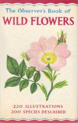 Wild flowers of namaqualand book