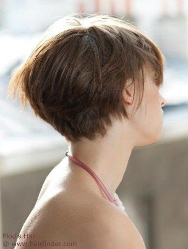 graduated bob haircuts 81 best hairstyles images on pixie cuts 1343