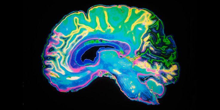 Neuroscience: The Risks of Reading the Brain http://www.corespirit.com/neuroscience-risks-reading-brain/ &HCATS%