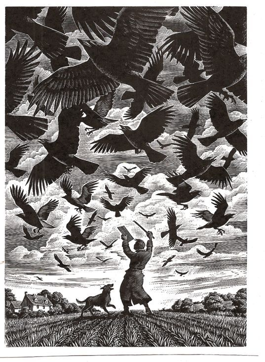 Andrew Davidson #Illustration