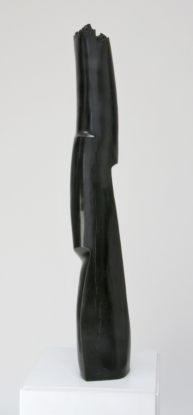 Olduvai, 1998, cast bronze, 15kg, edition of 6, w 190mm x h 1,060mm x d 160mm (photo: Helena Fierlinger)