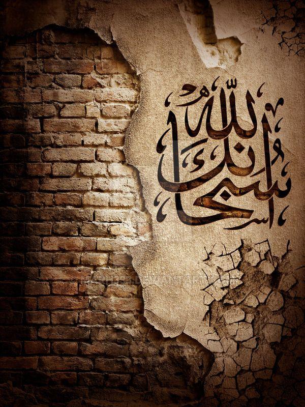 DesertRose///Subhan Allah by marh333 on DeviantArt