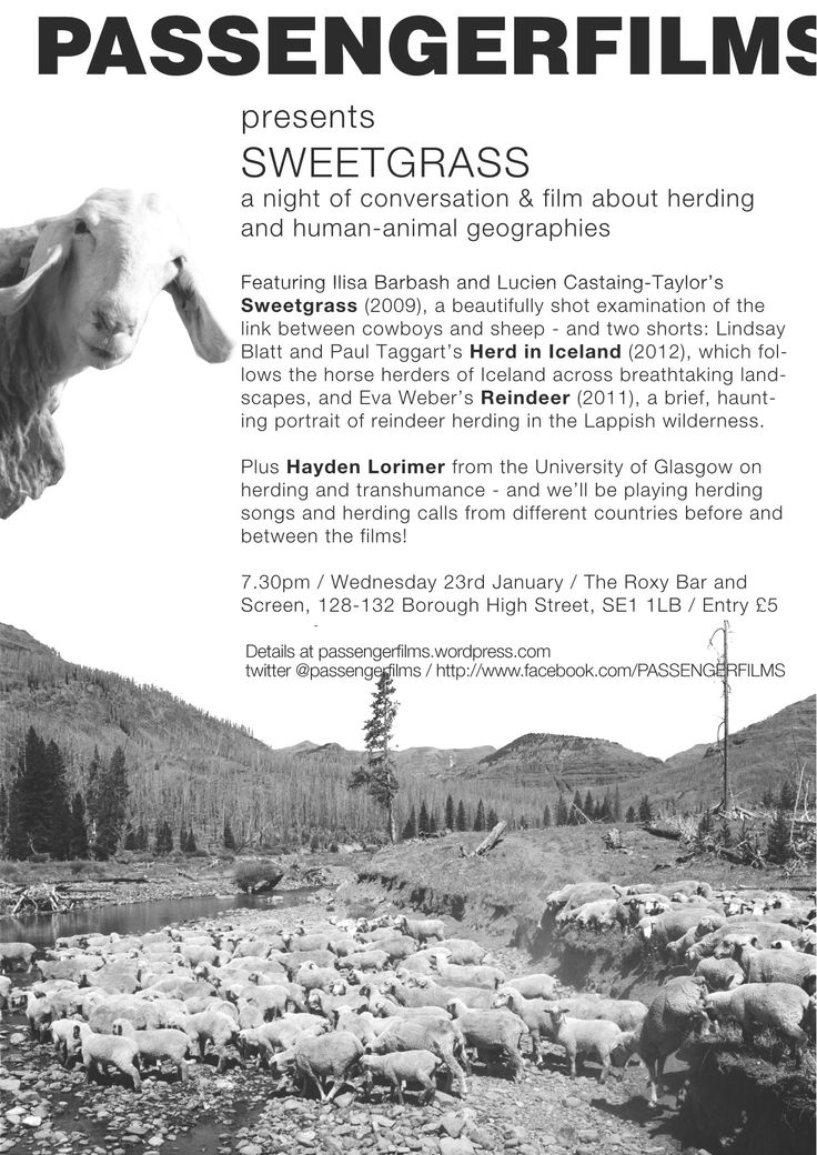 PASSENGERFILMS Sweetgrass documentary film event on 'herding'. 23 January Roxy Bar & Screen. Random but it works!!