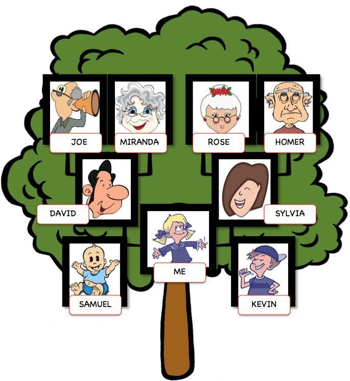 Картинка дерево семьи на английском