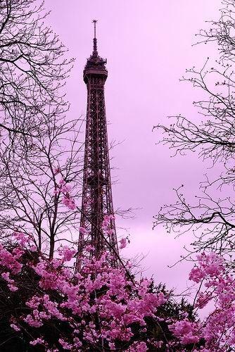 #pink Paris #Eiffel Tower