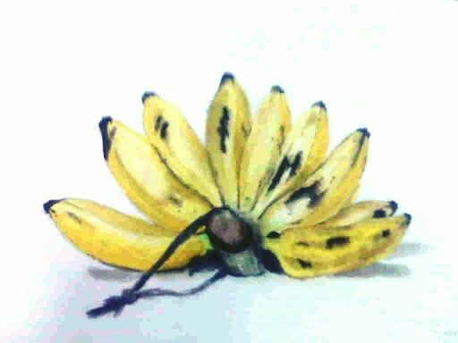 Water colour | tropical banana | drawing lesson |