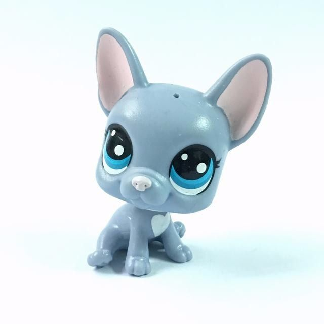 Littlest Pet Shop Buster Brindle French Bulldog Puppy Dog #62 Figure HA28