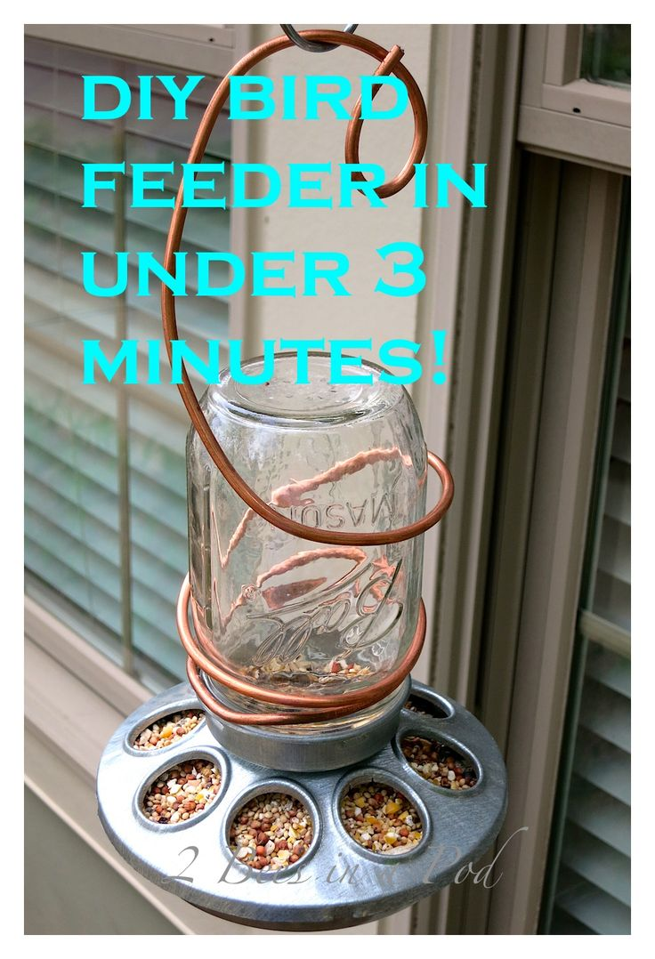DIY birdfeeder that can be made in less than 3 minutes. All you need is a Mason jar, chicken feeder, 3 feet of 8 gauge wire and birdseed. Do...