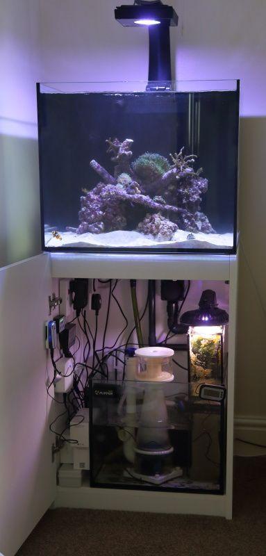 Review Red Sea Reefer 170 Rimless Braceless Aquarium