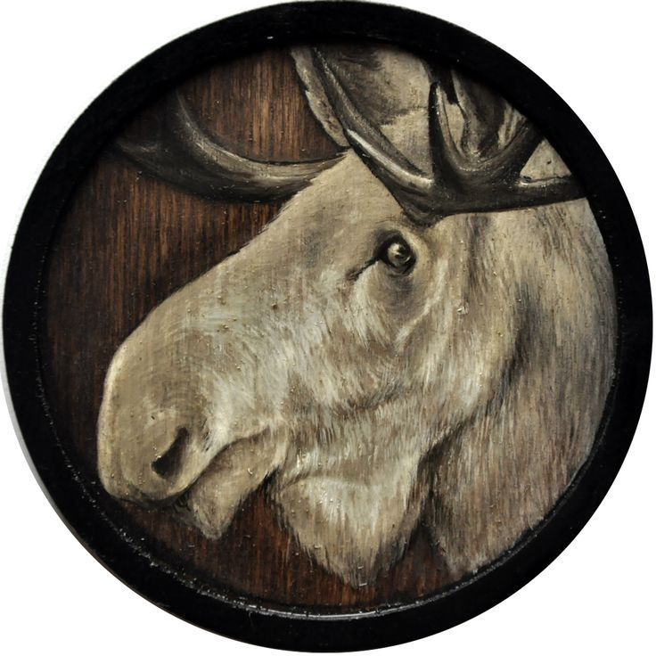 ∙ A L B I N O ∙ oil on wood panel, Ø 11,5 cm