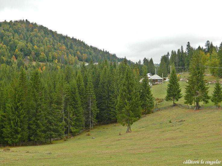 Gheţari village, Apuseni Natural Park, Transylvania