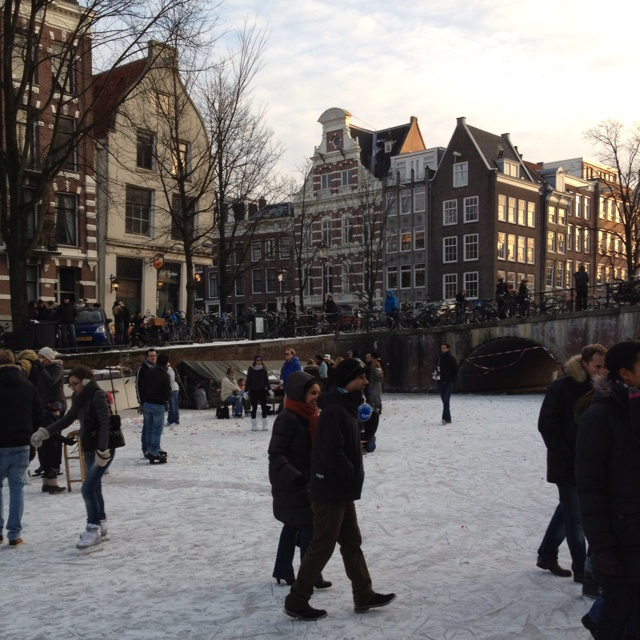 Amsterdam Canals on ice