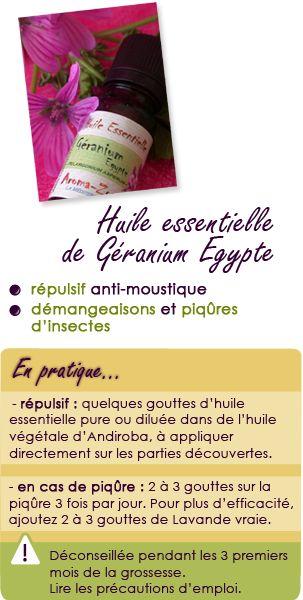 Huile essentielle de géranium Egypte : répulsif anti-moustique, démangeaisons et piqûres d'insectes.