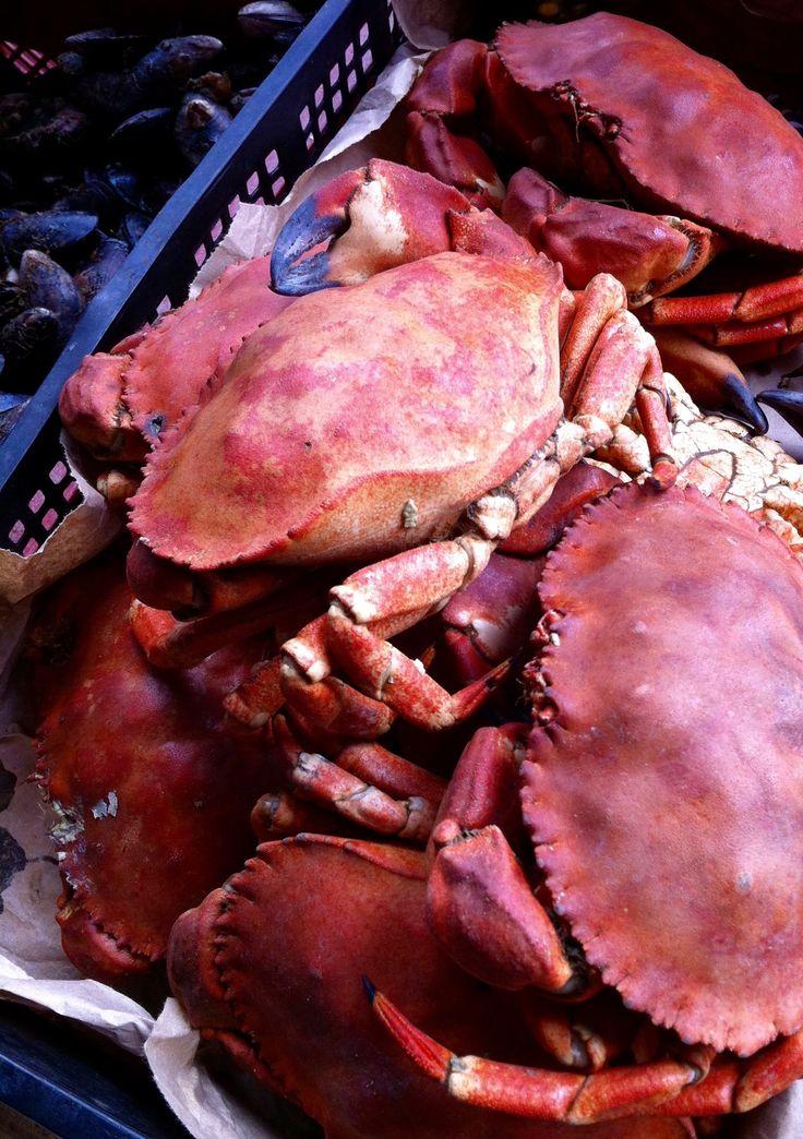 Jaiba, Crab