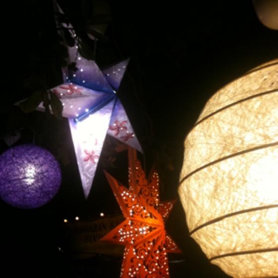 Lanterns Woodford Folk Festival