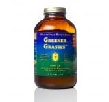 Live Superfoods Wheatgrass Juice Powder - Greens - Raw & Vegan Foods - Live Superfoods