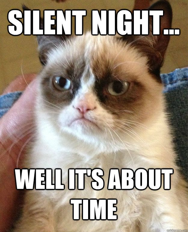 Grumpy Cat on Christmas Songs- Silent Night...Well it's about time. I guess grumpy cat and I are the only two creatures on earth who are sick of Christmas songs.