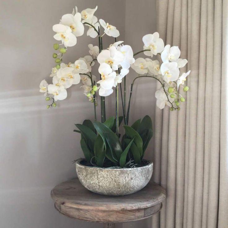 Schone Top 15 Wunderschone Weisse Pflanzen Garten Ideen Decoor Net Zuhause Dekor Bauernhaus Ru Orchid Flower Arrangements Indoor Orchids Orchid Interior