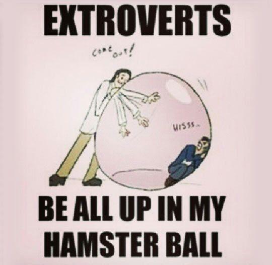 10 skillnader mellan extroverta och introverta människor