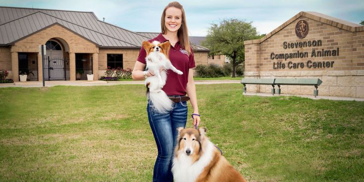 This Veterinary College Student Lives with 36 Pets - Vet Student Runs Retirement Home for Pets