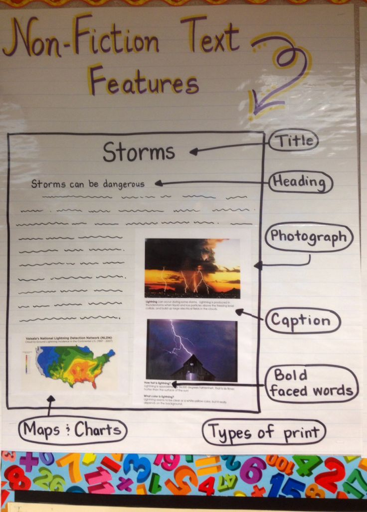 Text And Graphic Features Anchor Chart