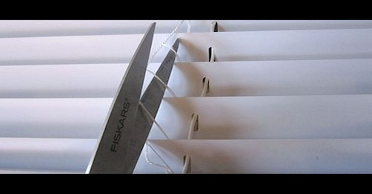 She Cuts Her Window Blinds With Scissors And The Result Is Brilliant