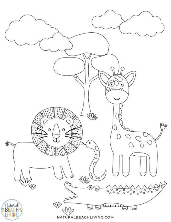 Wild Animals Printables For Preschool And Kindergarten Natural Beach Living Animal Worksheets Animal Activities For Kids Jungle Animals Preschool