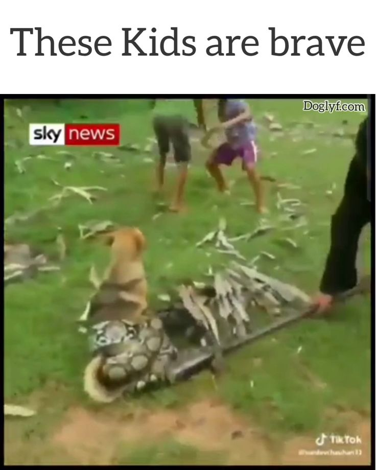 More power to these kids