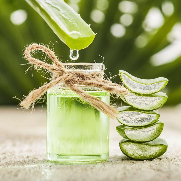 DIY-Rezept für Aloe Vera Shampoo für fettiges Haar - Shampoo zum selber machen, ein einfaches Rezept zur natürlichen Haarpflege