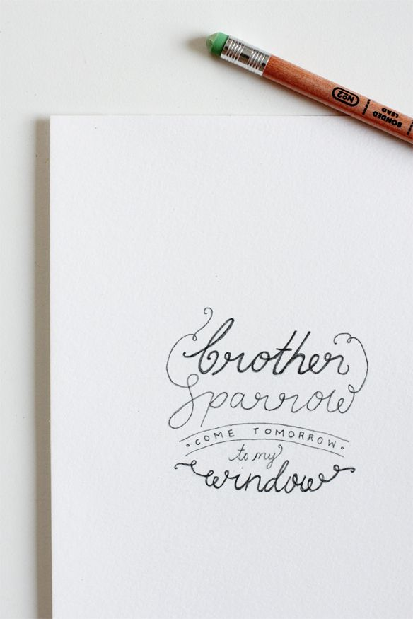 : Design Type Logo, Doodle, Callligraphy Lettering, Brother Sparrow, Hand Lettering