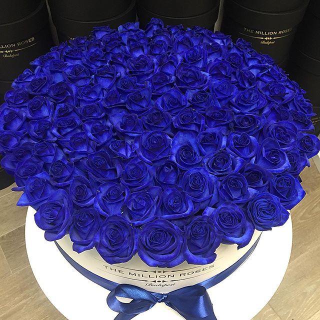 So special gift💙 #themillionroses #blueroses #110 #TMR