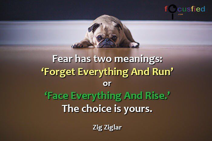 """""""Fear has two meanings. 'Forget everything and run' or 'Face everything and Rise'. The choice is yours."""" Visit Quotes for Life at http://ift.tt/2niNLDk #Quotes #Motivate"""