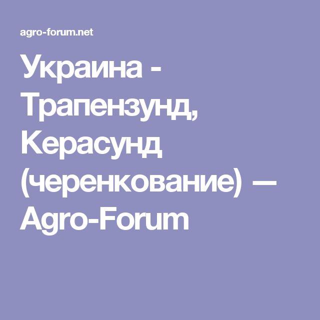 Украина - Трапензунд, Керасунд (черенкование) — Agro-Forum