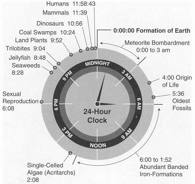 Evolution.: History, Life, Stuff, 24 Hour Clock, 24 Hours, Infographic, Clocks, Science