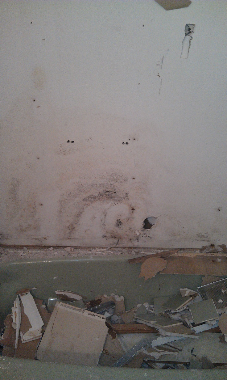 How to identify black mold - Demolition Begins Uncovered Black Mold Very Dangerous