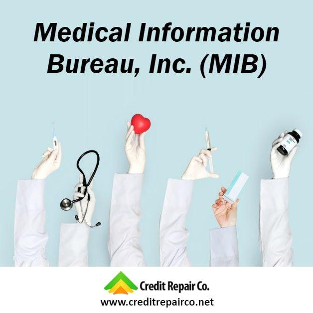 Mib The Medical Information Bureau Inc Mib A Delaware