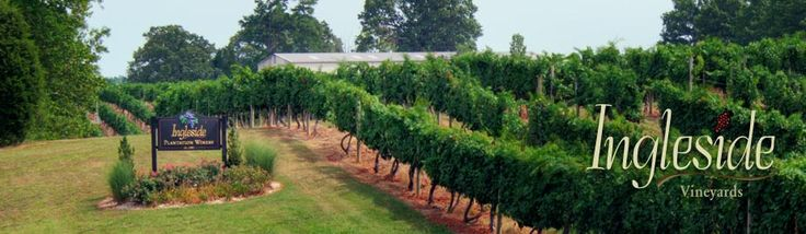 Ingleside Vineyards - Northern Neck
