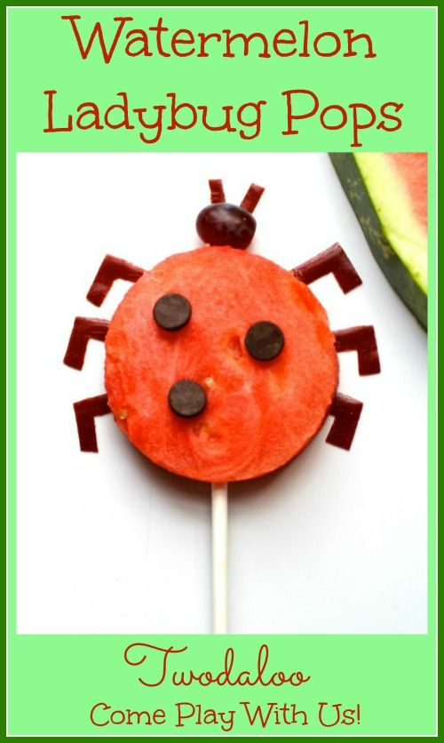 "A fun and easy watermelon ""lollipop"" snack perfect for summer by Twodaloo!"