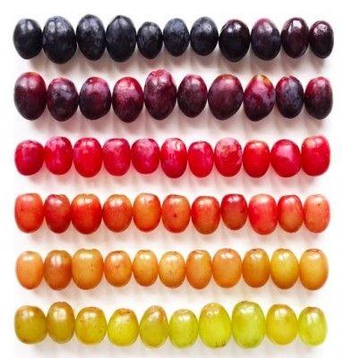 Heerlijk: Super georganiseerde foto's van groenten en fruit | NSMBL.nl