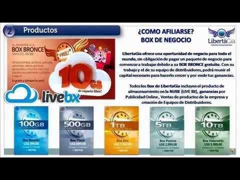 LibertaGia, Presentación de Negocio Y Plan de Ingresos.