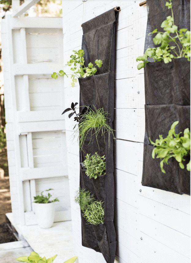10 Cute & Easy Hanging Garden Ideas # ...