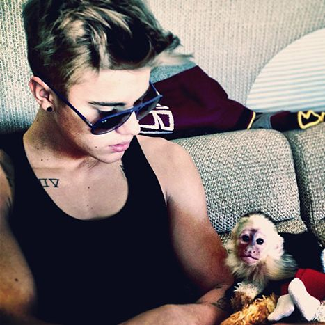 Justin Bieber's Pet Monkey I LOVE justin bieber awwwwwwwwwwwwwwwwwwwwwwwwwwwwwwwwwwwwwwwwwwwwww