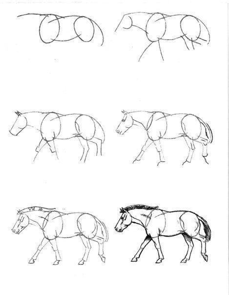 Ein Pferd Zeichnen Dekoking Com 2 Elic In 2019 Pinterest