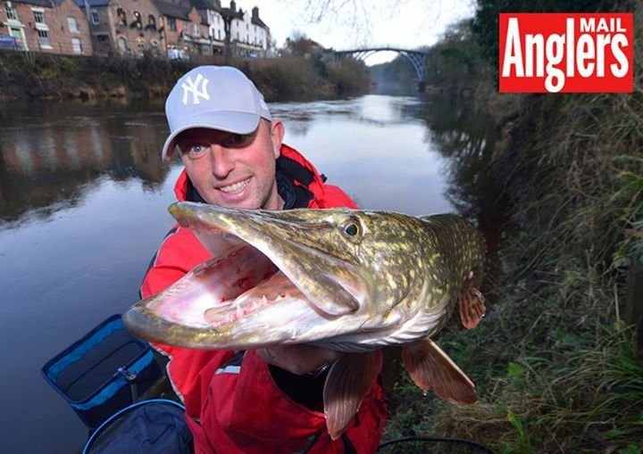 Quick question: what's the best predator you've ever caught?  Steve Collett had this fine pike from a stretch of the River Severn that's fishing its socks off for various species - full story in AM print magazine. {#fishing #Hunting #Fish #icefishing #camping #flyfishing #bass #bassfishing  #boat #Florida #trout #boating #fishing #flyfishing #outdoors #vacation  #fishing #family #sea #carp #boats #angling #lake #tuna #ocean #Salmon #fishing #fisherman #crappie #Retweet #Lures #walleye…