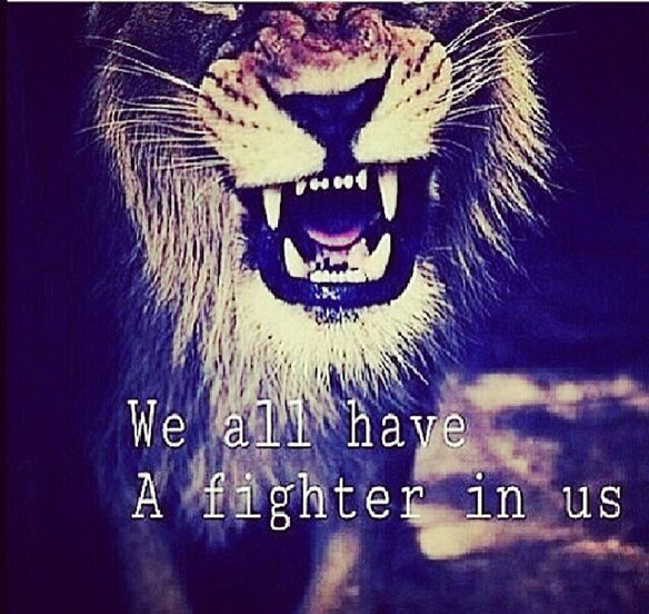 Damn Straight! #fighter #lion